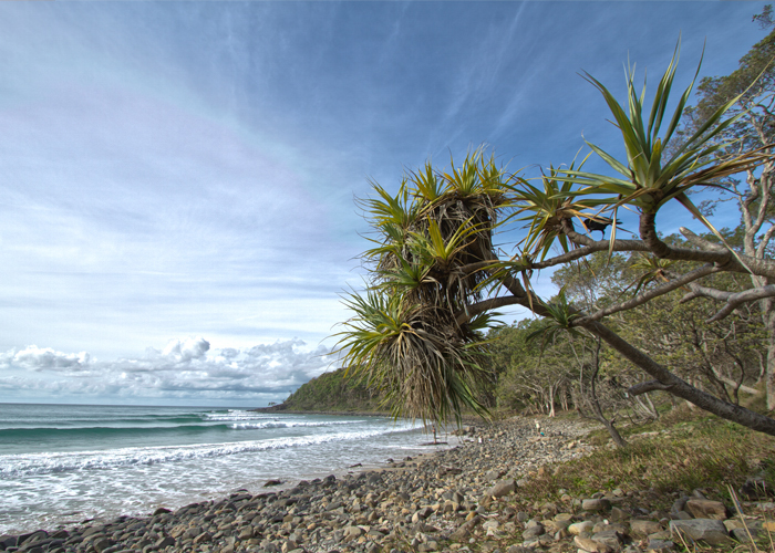 Noosa Heads National Park in Queensland, Australia. Photo by Alexander Brown / BasementVision