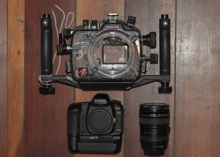 Simple Canon 5D setup w/Ikelite underwater housing. No flash or other lighting