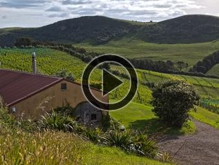 Waiheke Island – holidaycottage