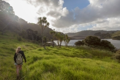 Exploring the Waitakere Ranges