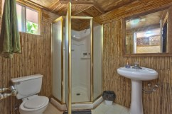 Guest room, bathroom