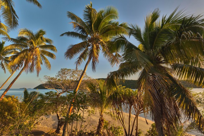 Lush tropical jungle and sand beaches